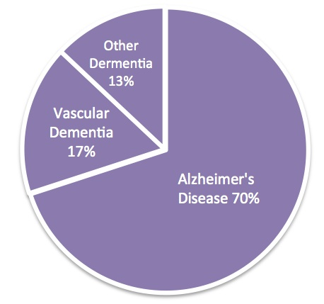 Fast Facts Dementia And Alzheimers Disease